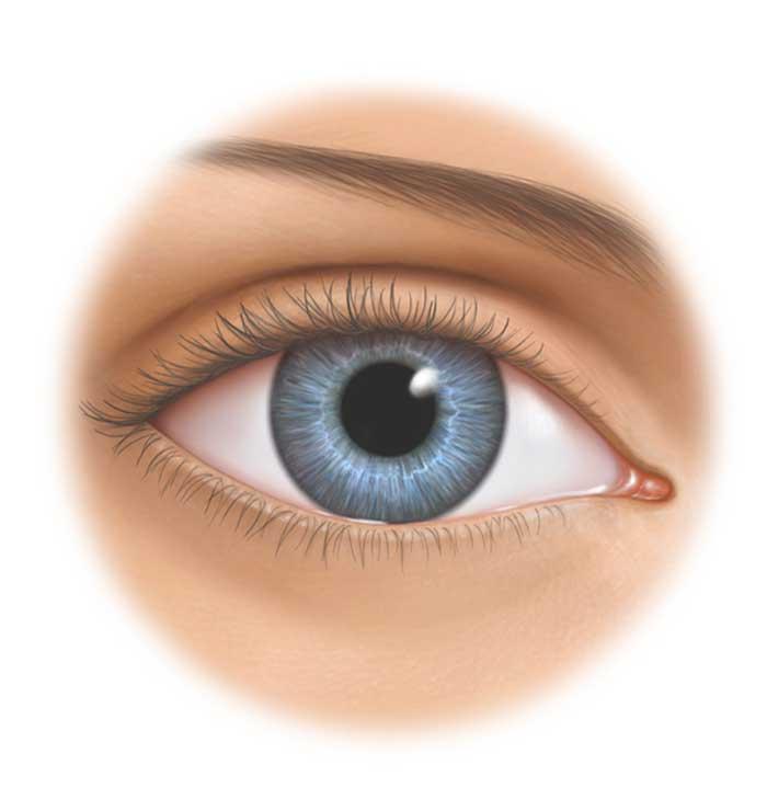 Praxis9-WZ-Auge