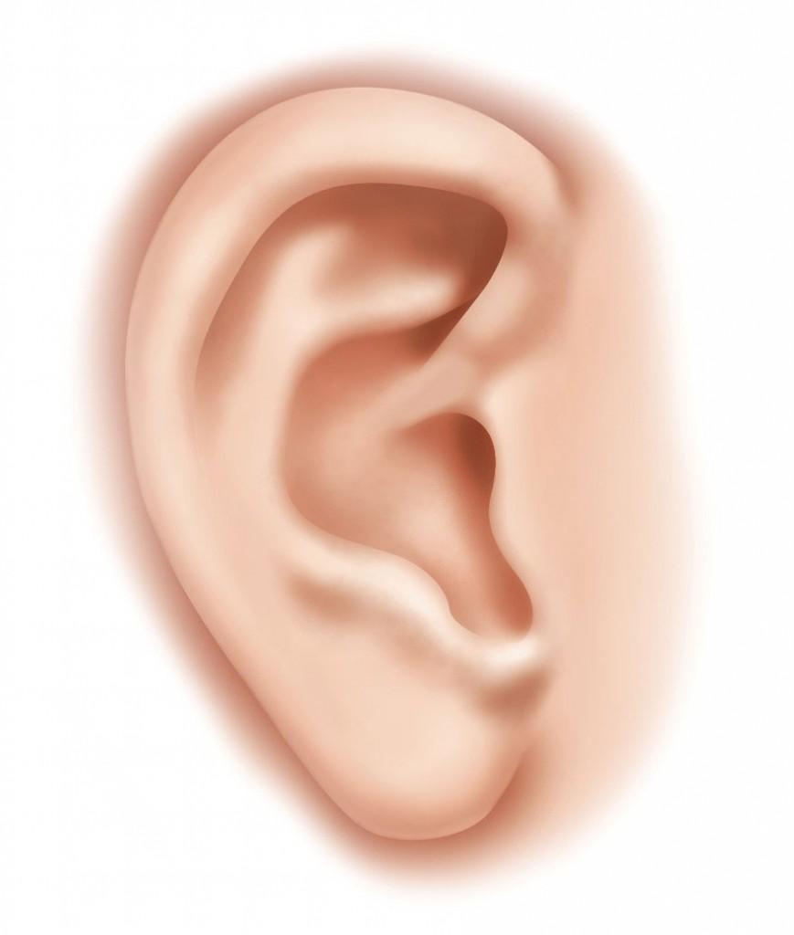 Raumakustik-Ohr